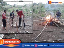 Polisi Gerebek Arena Sabung Ayam di Ketapang, Penjudi Lari Berhamburan